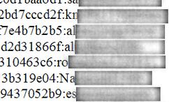 Passwords in plain text